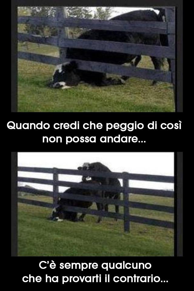 Simpatiche vignette viralizzato for Vignette buongiorno simpatiche