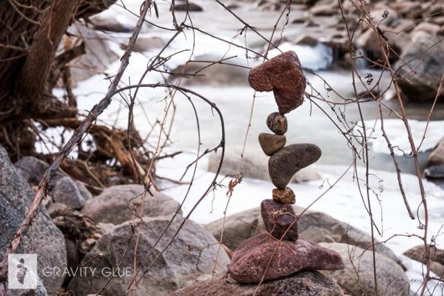 sculture con sassi
