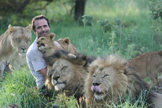 uomo contento di esser divorato dai leoni (8)