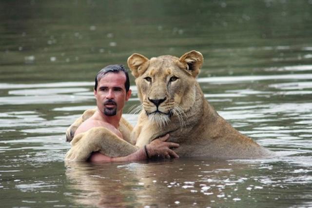 uomo contento di esser divorato dai leoni (9)