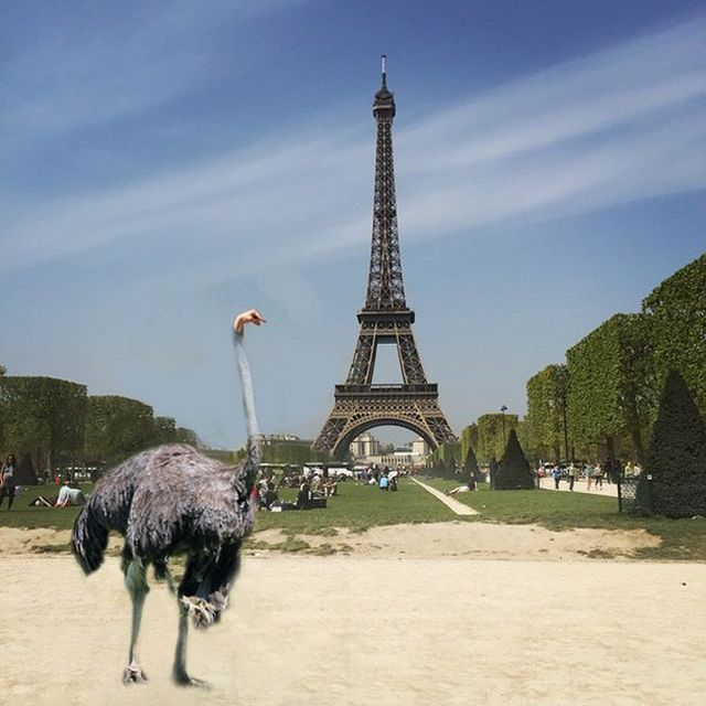 torre eiffel photoshoppata (28)
