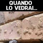 foto muro sigaro viralizzato quando lo vedrai