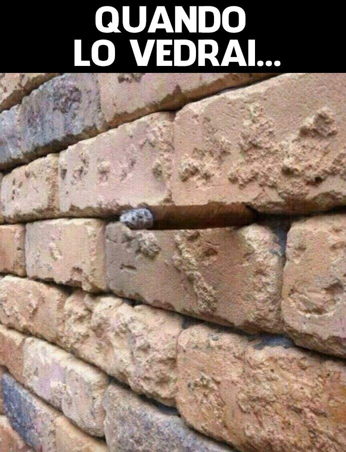 foto muro sigaro viralizzato