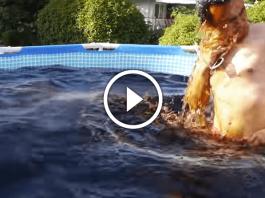 bagno piscina coca-cola mentos